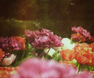 flowers and girly image