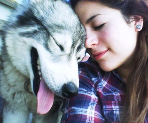 dog, girl, and lovely image