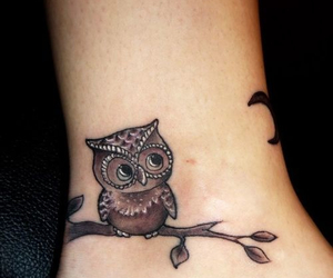ankle, cool, and owl image
