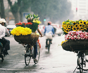 flowers, street, and bish image