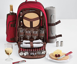 backpack and picnic image