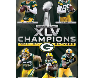 green bay packers and super bowl xlv image