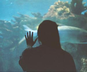 girl, photography, and fish image