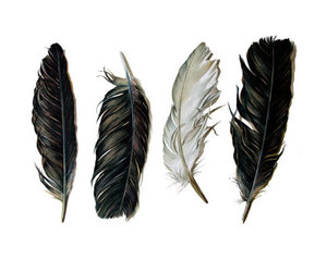 feather, black and white, and black image