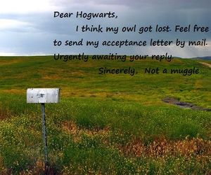 harry potter, Letter, and lost image