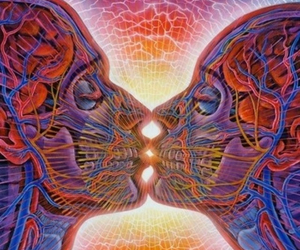 alex grey, art, and psychedelic image