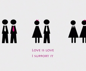 bisexual, gay, and gay marriage image