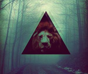 lion, triangle, and hipster image