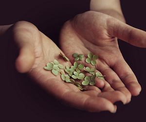 hands, green, and lucky image