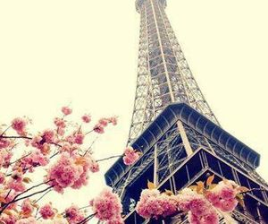 flowers, paris, and places image