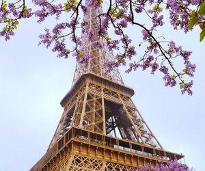 eiffel, paris, and travel image