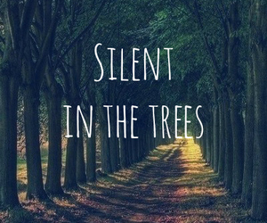 lonely, silent, and trees image