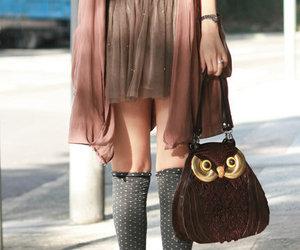 fashion and owl image