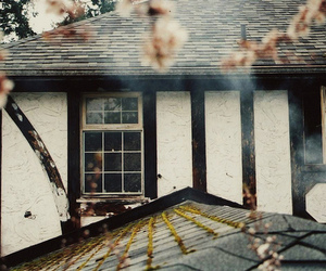 house, window, and flowers image
