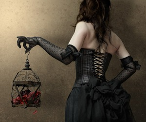 birdcage, gloves, and black image