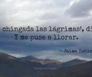 cry and frases image