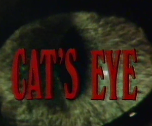 cat and eye image