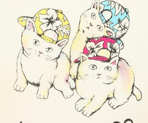 cat, snapbacks, and kitten image