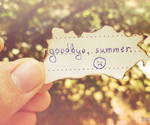 summer, goodbye, and sad image