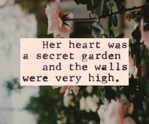 heart, quote, and roses image