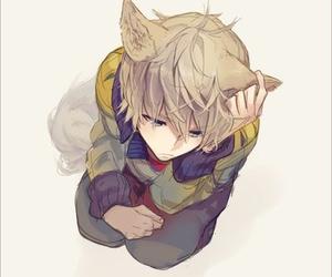 anime, neko, and boy image