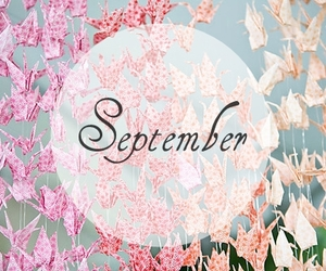 September, pink, and flowers image