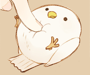 bird, cute, and kawaii image