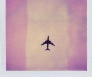 airplane, pink, and polaroid image