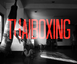 kickboxing and thaiboxing image