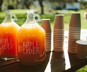 drink, autumn, and apple cider image