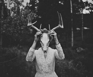 skull, black, and deer image