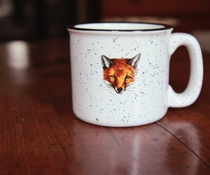 fox, cup, and coffee image