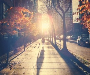 photography, street, and sun image