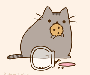 cat, pusheen, and cookie image