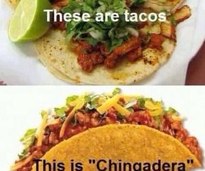 tacos, food, and funny image