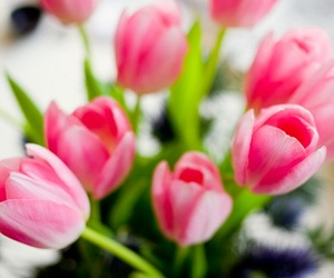 flowers, beautiful, and floral image