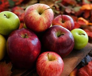 apple, fall, and autumn image