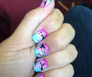 cherry blossom, nail art, and manicure image