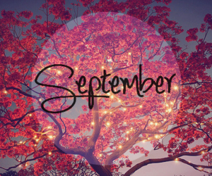 September, autumn, and tree image