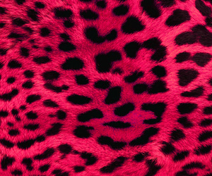 pink, leopard, and wallpaper image