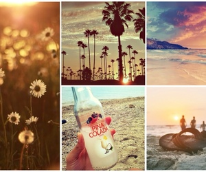 beach, flowers, and happiness image