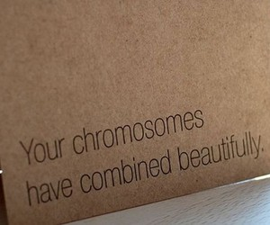 text and chromosomes image