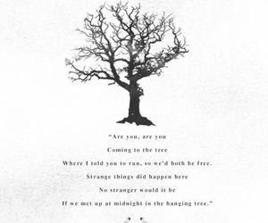 quote, the hunger games, and the hanging tree image