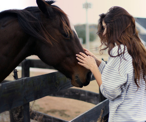 horse, girl, and animal image