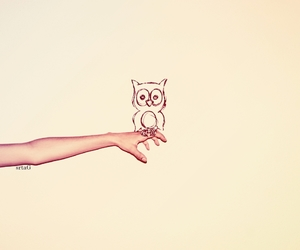 owl, hand, and drawing image