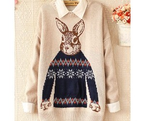 rabbit, sweater, and sweet image