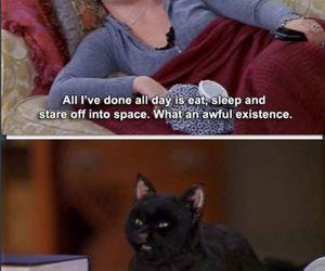salem, cat, and sabrina image