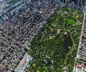 beautiful, new york, and Central Park image