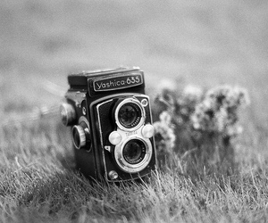 100, film, and black and white image