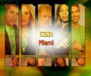 <3, csi, and florida image